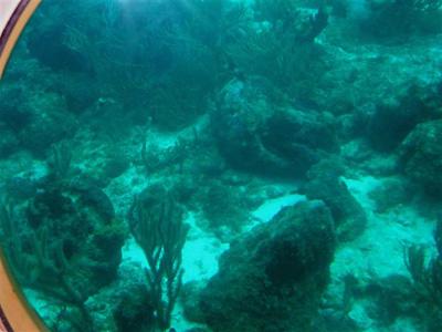 潜水艦に乗って海底散歩