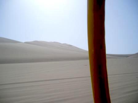 砂漠の真っ只中へ